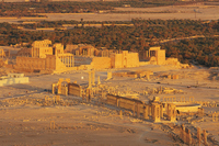 Palmyra illuminated in sunset Stock photo [637950] Palmyra