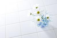 Tile Stock photo [726361] White