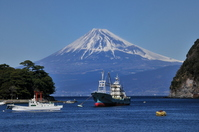 戸田港から見た富士山