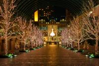 Ebisu Garden of illumination Stock photo [733354] Tokyo
