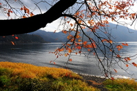 Late autumn of Lake Biwa Stock photo [955760] Late