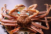 Matsuba crab Stock photo [956588] Pine