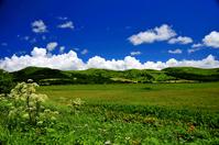 Plateau summer Stock photo [959093] Plateau