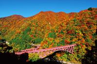 Kurobe Gorge Stock photo [965836] Toyama