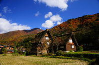 Fall of Shirakawa-go Stock photo [1078990] Autumn