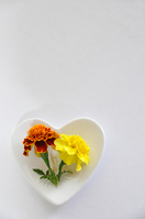 The marigold in Heart of dish Stock photo [1180371] Flower