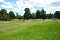 Field Stock photo [1184601] Field