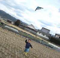 Kite flying Stock photo [1189136] Kite