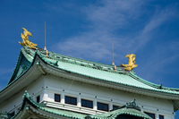 Nagoya Castle Stock photo [37781] Aichi