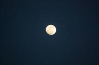 Full moon Stock photo [1282119] Moon