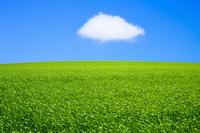 Grassland and blue sky Stock photo [1282362] Prairie