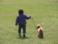 Poodle and boy Stock photo [1283855] Park