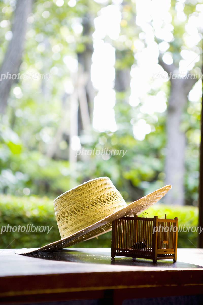 Summer image Photo
