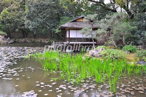 京都 渉成園 印月池と漱枕居 写...