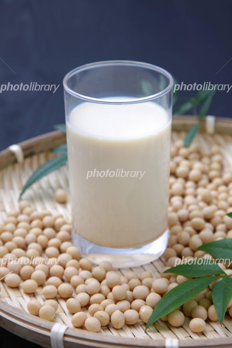 豆乳の画像 p1_24