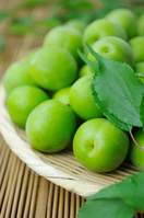 Ome for plum wine Stock photo [1366576] Prunus