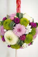 Ball bouquet of Pinponmamu Stock photo [1371202] Chrysanthemum