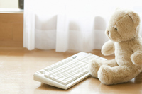 Teddy bear Stock photo [1373017] Room