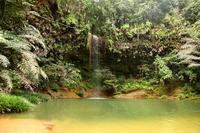 Orchid Bill Hills National Park waterfall Stock photo [1460044] Ranbiru