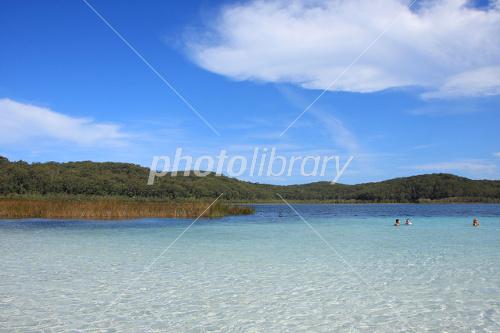 フレーザー島の画像 p1_14