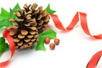 Christmas Stock photo [1557556] Christmas
