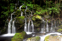 Subsoil water of the original waterfall of Mt.Chokai Stock photo [1561797] Mt.Chokai