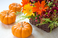 Halloween arrangement Stock photo [1565144] Autumn