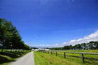 Central Plateau Yatsugatake farm Stock photo [1666408] Plateau