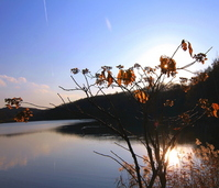 Nishioka Park reservoir at dusk Stock photo [1669698] Sapporo-Shi