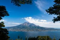 Sakurajima from Yoshino park Stock photo [1838208] Kagoshima