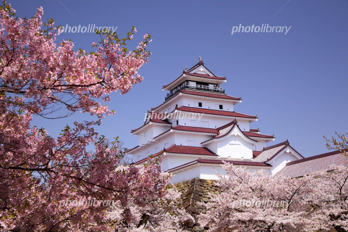 Fukushima Prefecture Aizu-Wakamatsu Castle and cherry Photo