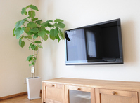 Living wall-mounted flat-screen TV Stock photo [2058798] Liquid