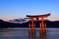 厳島神社の大鳥居夕景