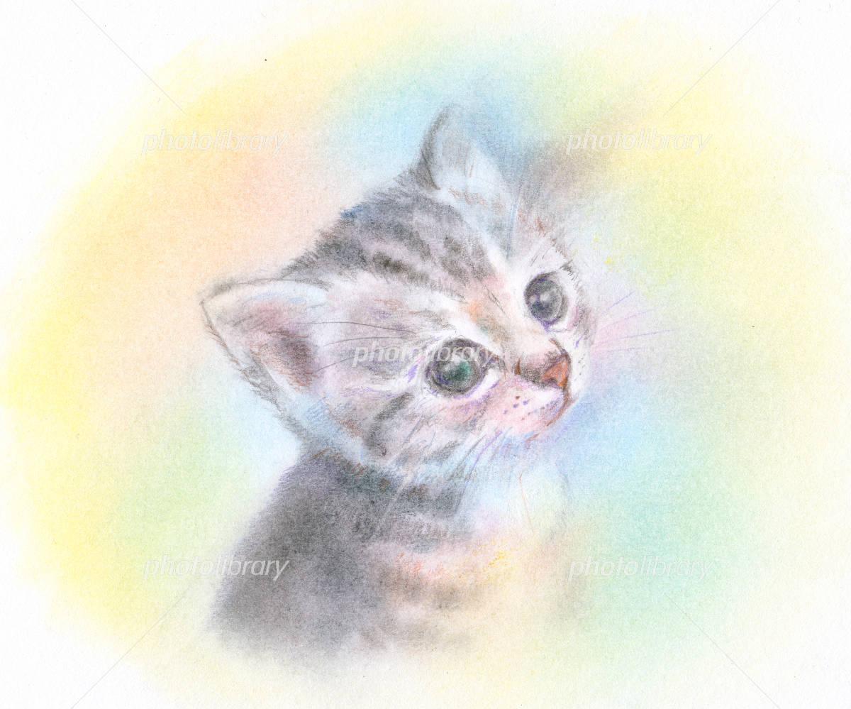 うるうるした瞳の子猫 イラスト素材 2162669 フォトライブラリー