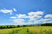 Vast landscape of Biei Stock photo [2161941] Biei