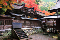 Oyada shrine with autumn leaves Stock photo [2282080] Gifu