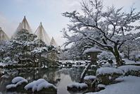 Kenrokuen that was hit in December of snow Stock photo [2282114] Ishikawa