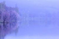 Spring of fog Stock photo [2293807] Spring