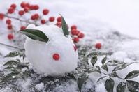 Snow rabbit Stock photo [2294508] Yukito