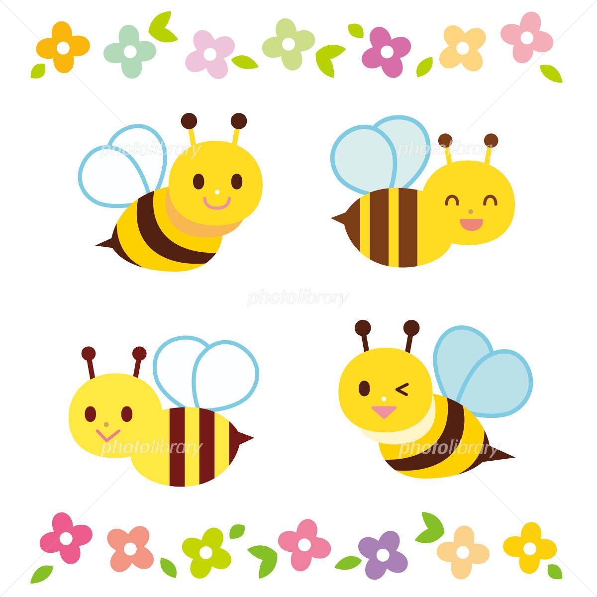 蜂と花 イラスト素材 フォトライブラリー Photolibrary