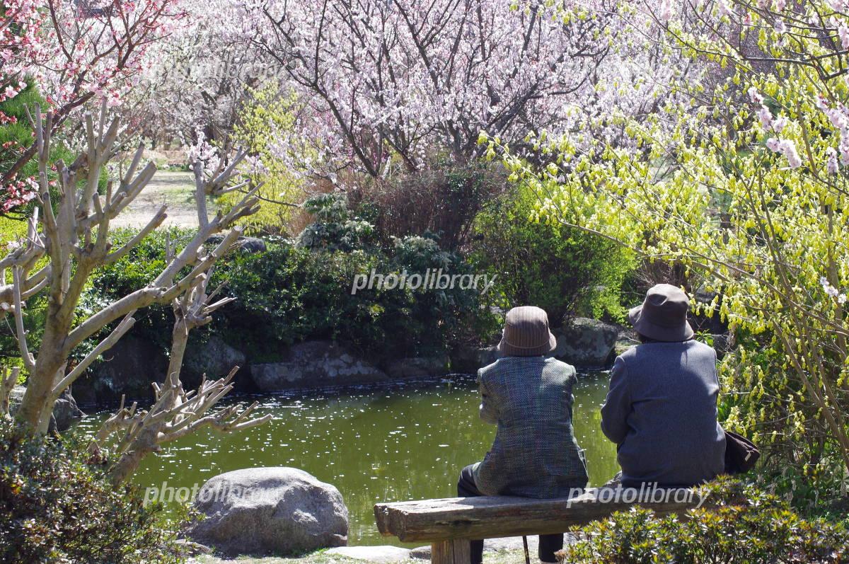 Break at Hanami Photo