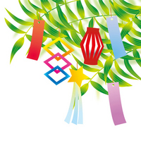 Bamboo Tanabata Bamboo,
