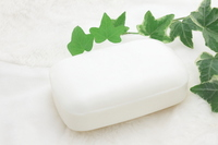 Leaves of soap and ivy Stock photo [2539432] SOAP
