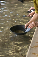 Alluvial gold picking Stock photo [2539804] Alluvial