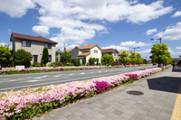 Residential area Stock photo [2542391] House