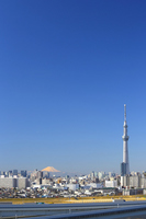 I hope Mount Fuji and Tokyo Sky Tree at the same time. Stock photo [2651743] Tokyo