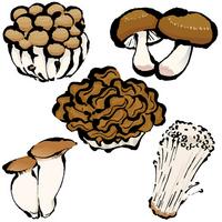 Mushrooms [2656366] Mushroom