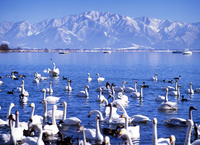 Lake inawashiro Stock photo [3351] Fukushima