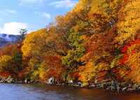 Autumn Lake Stock photo [3938] Tochigi