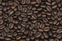 Coffee beans Stock photo [4561] Coffee